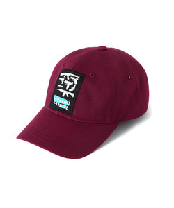 WASTED PLANET BALL CAP(BURGUNDY)_CTOGUHW04UP3