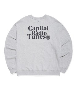 APPLE FULL LOGO SWEATSHIRT(GRAY)_CRTZICR01UC0