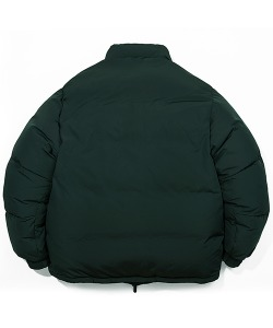 OVER DOWN PARKA(FOREST GREEN)_CTTZIDJ01UG1